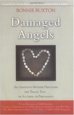 Damaged Angels